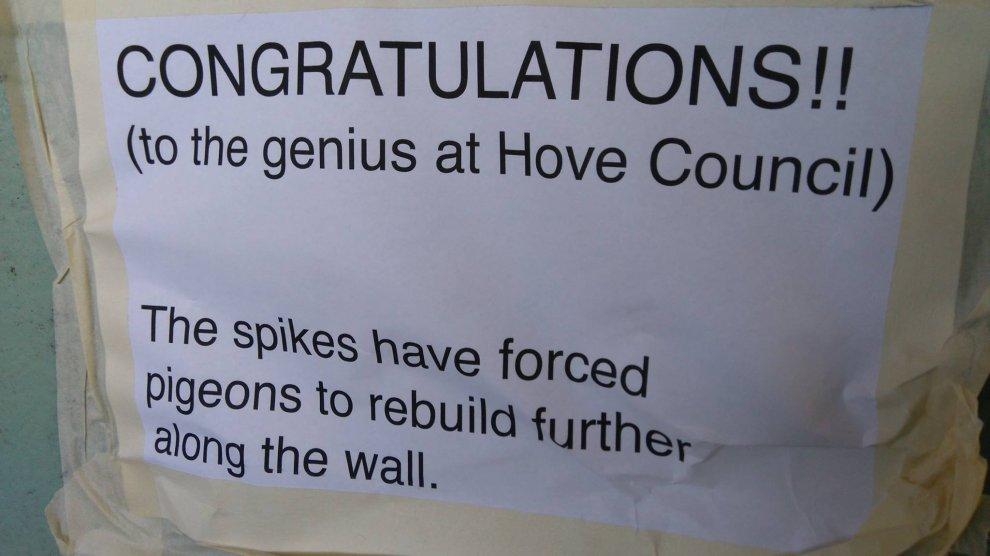Hove-Station Footbridge Pigeon Problem